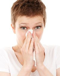 3 Approaches to Allergy Relief